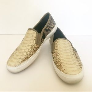 Coach Chrissy Anaconda Sneakers